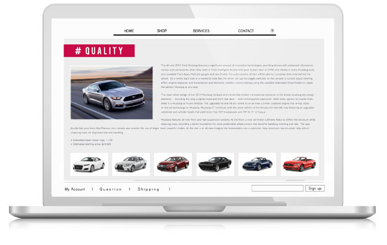 professional-vehicle-reviews-for-vehicle-detail-pages